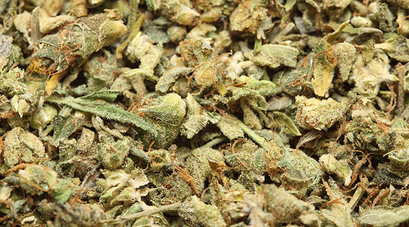 Decarboxylation of Cannabis