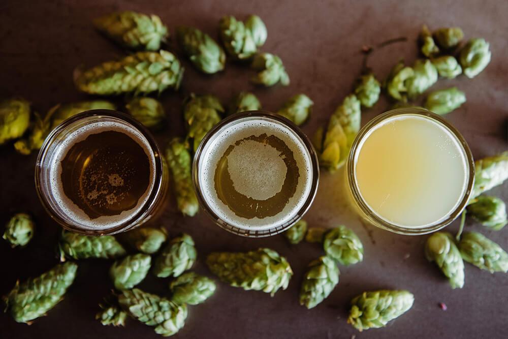 Beer Contains Myrcene