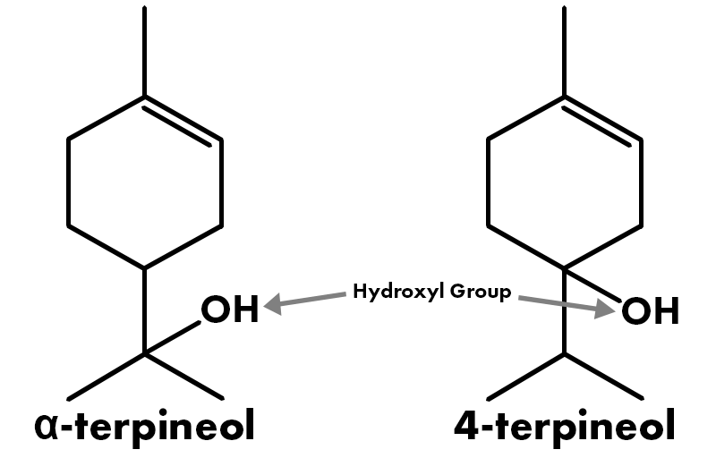 Chemical Structure of Terpineol